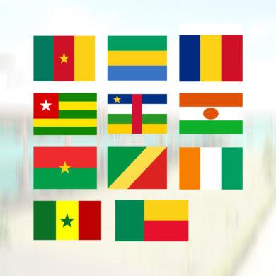 iai-pays-membres